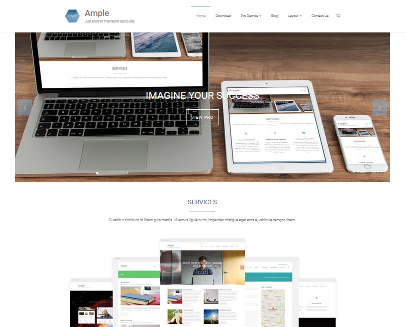 free responsive wordpress themes ample