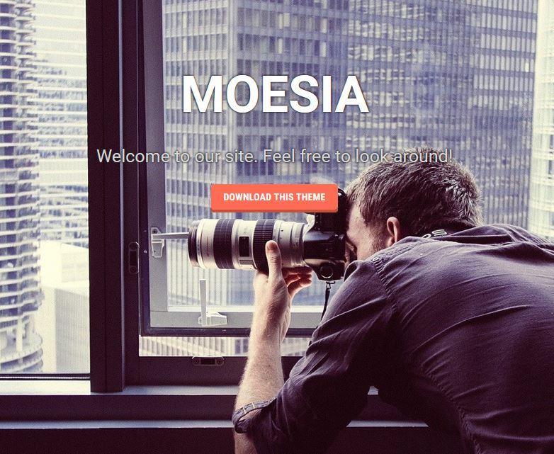 free responsive wordpress themes moesia