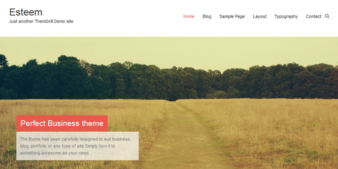 Release of Our New Free Theme – Esteem