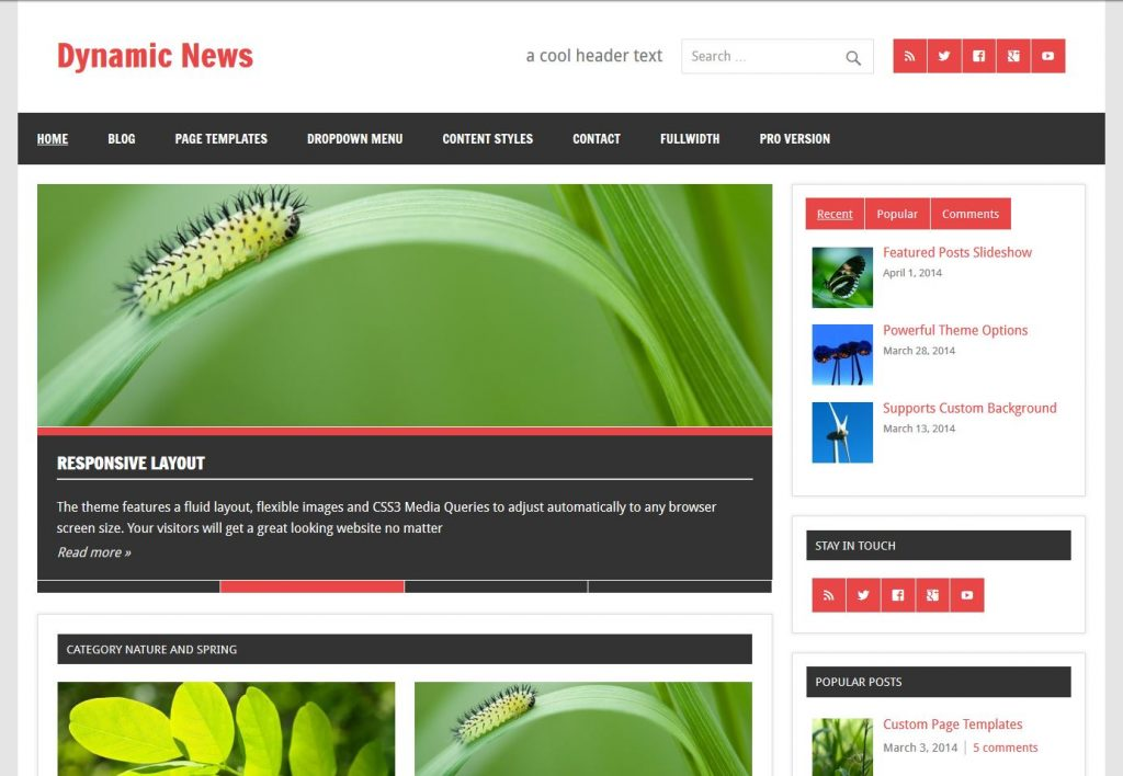 free magazine wordpress theme dynamic news lite
