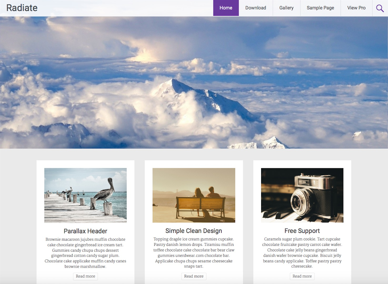 free wordpress themes for persoanl blog radiate
