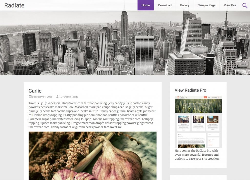 free wordpress themes for personal blog radiate two