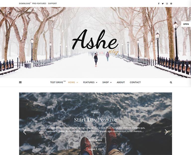 30+ Best Free Personal Blog WordPress Themes & Templates 2019
