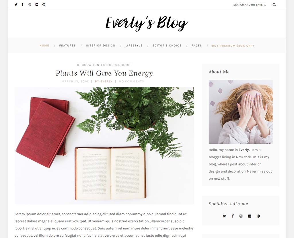 everly-lite-free-wordpress-blogging-theme