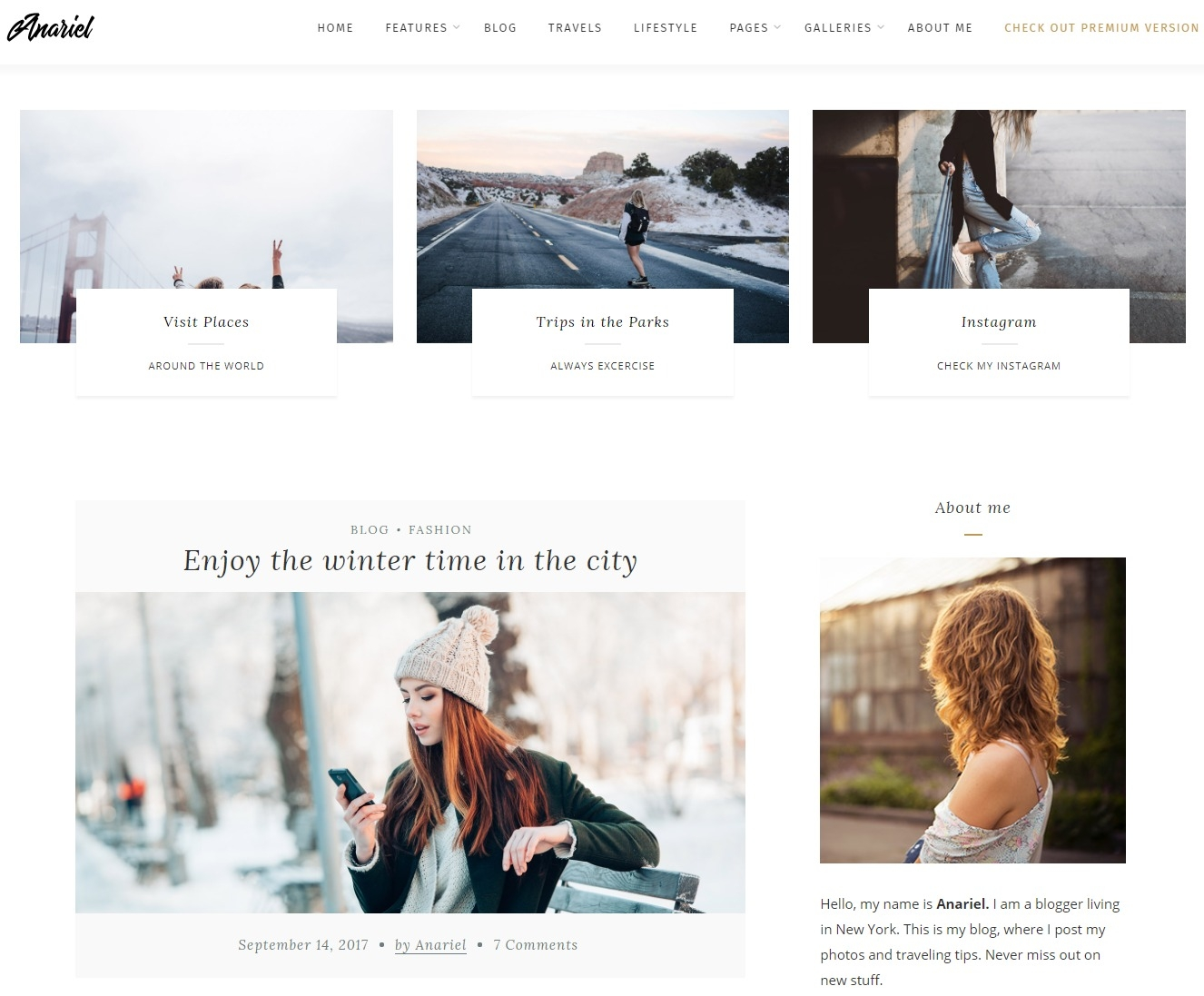 Anariel Free Responsive WordPress Theme