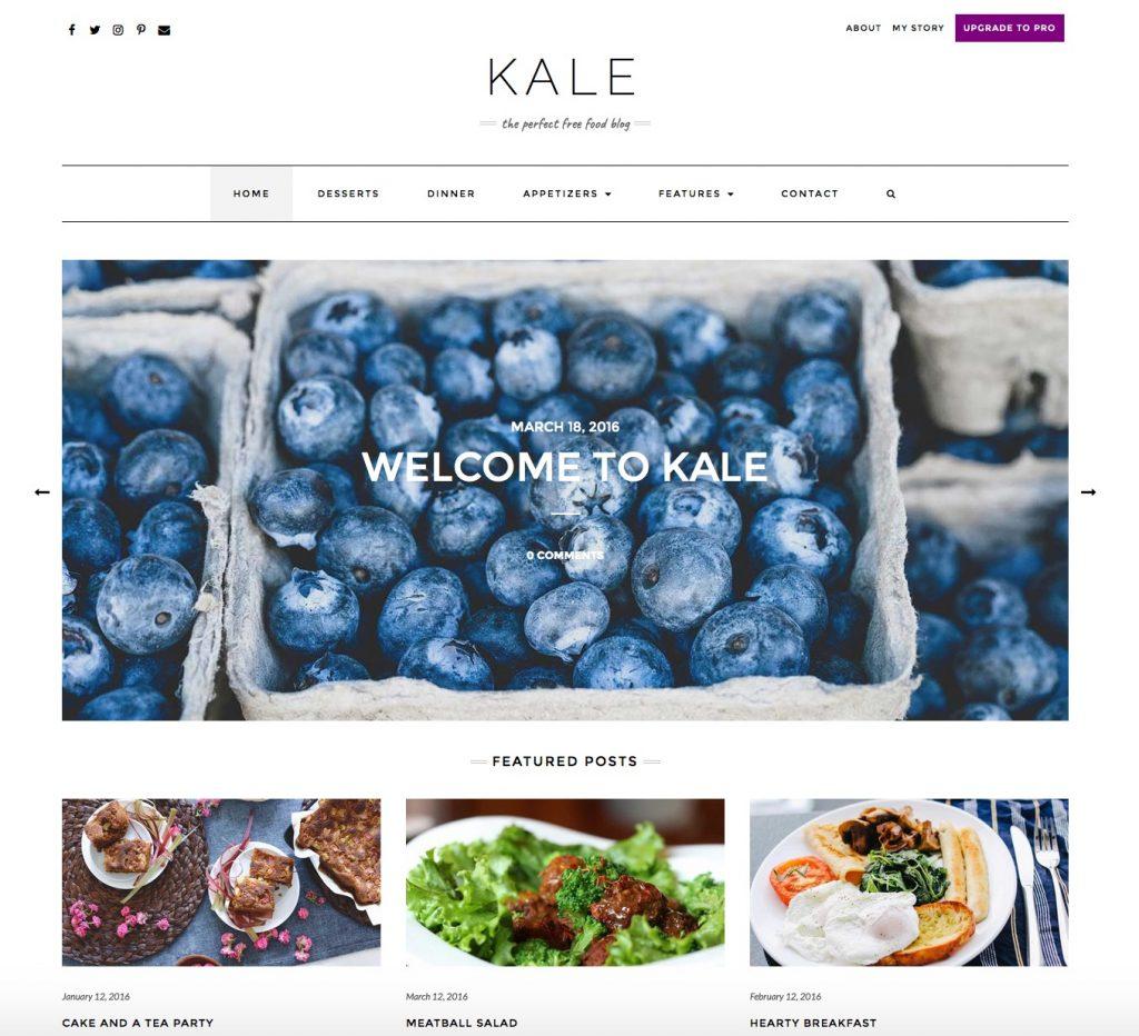 10+ Best Free Responsive Restaurant WordPress Theme 2019