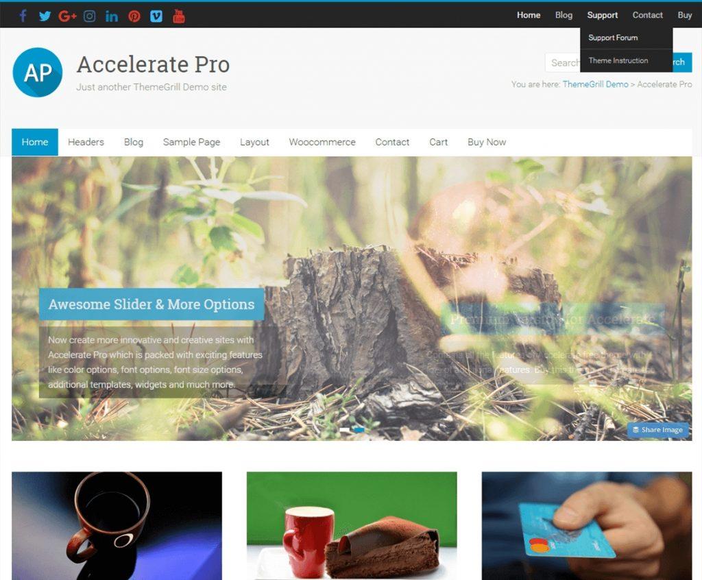 accelerate-pro-best-wp-multipurpose-theme