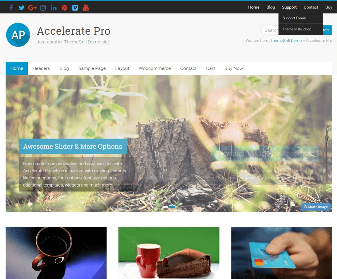 accelerate-pro-best-wp-multipurpose-theme
