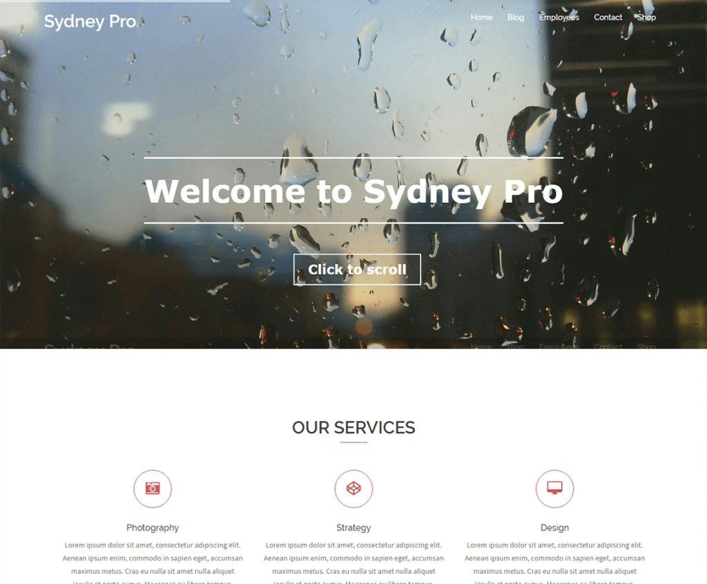 sydney-pro-best-wordpress-business-theme