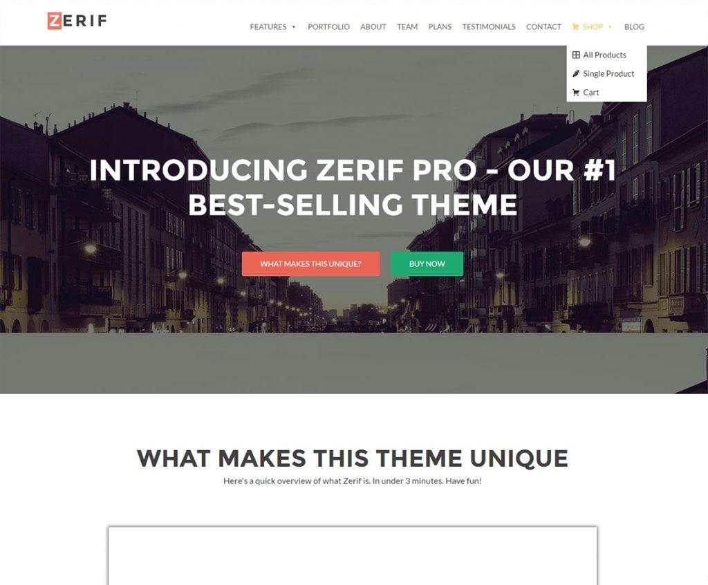 zerif-pro-premium-business-wp-theme
