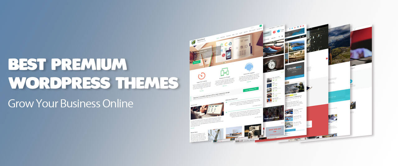 Premium WordPress Themes Websites