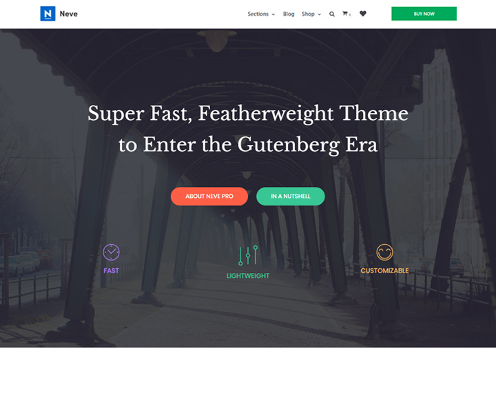neve best wordpress themes