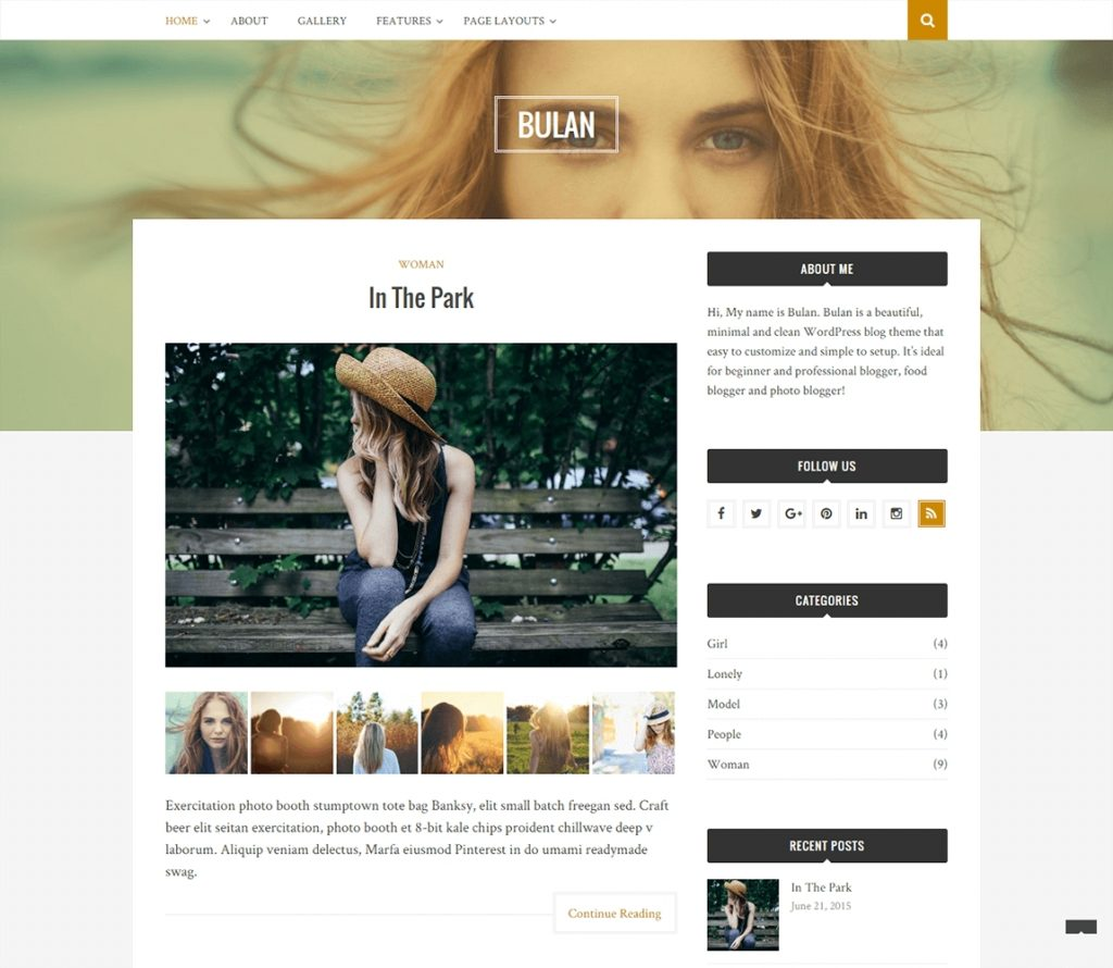 70 best free responsive wordpress themes 2018 themegrill