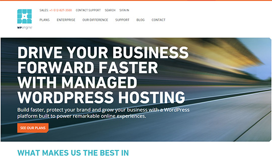 WP Engine- best WordPress Managed hosting