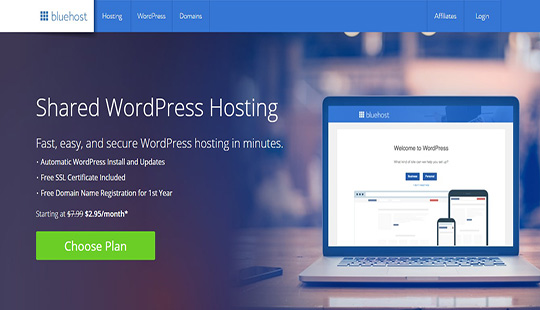 WordPress Hosting Bluehost