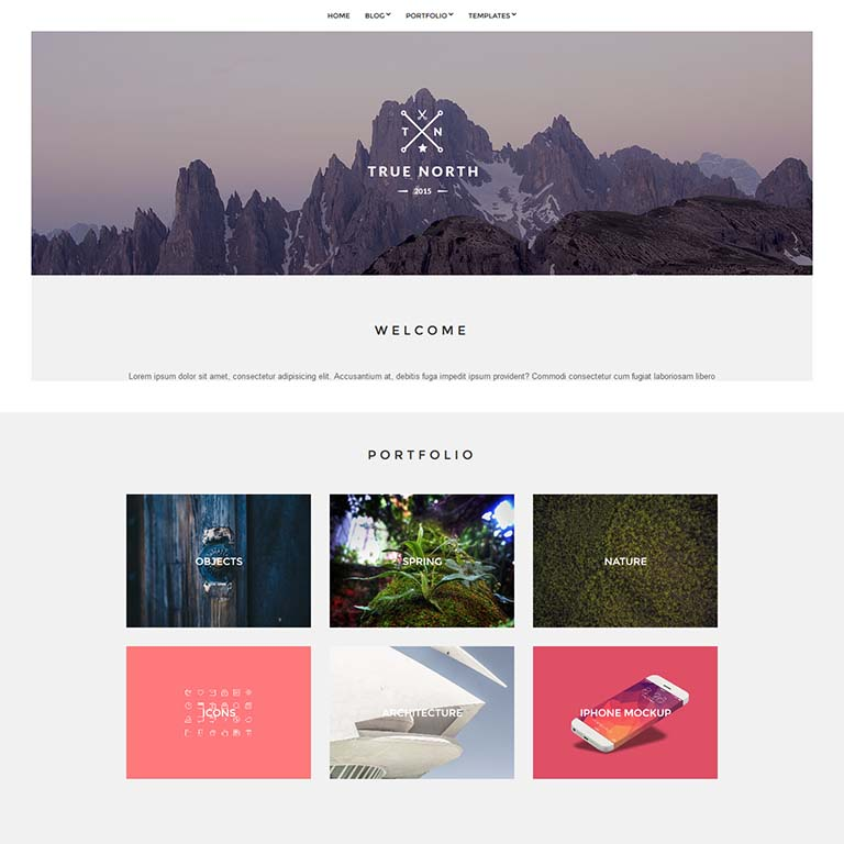 True North-simple-wordpress-themes