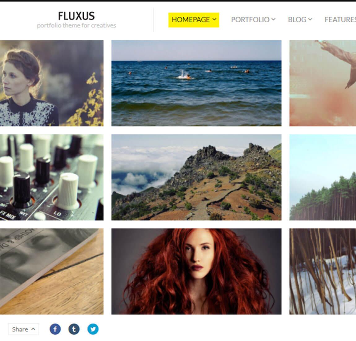 Portfolio-Homepage-Fluxus-wordpress-theme