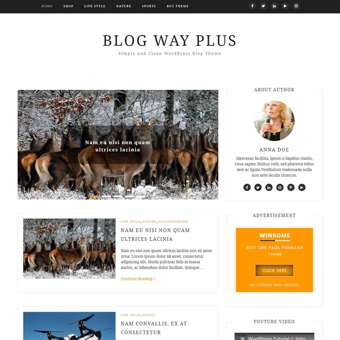 blog-Way-Plus-Simple-and-Clean-WordPress-Blog-Theme