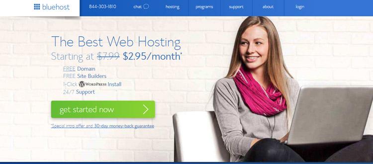 bluehost-domain-company