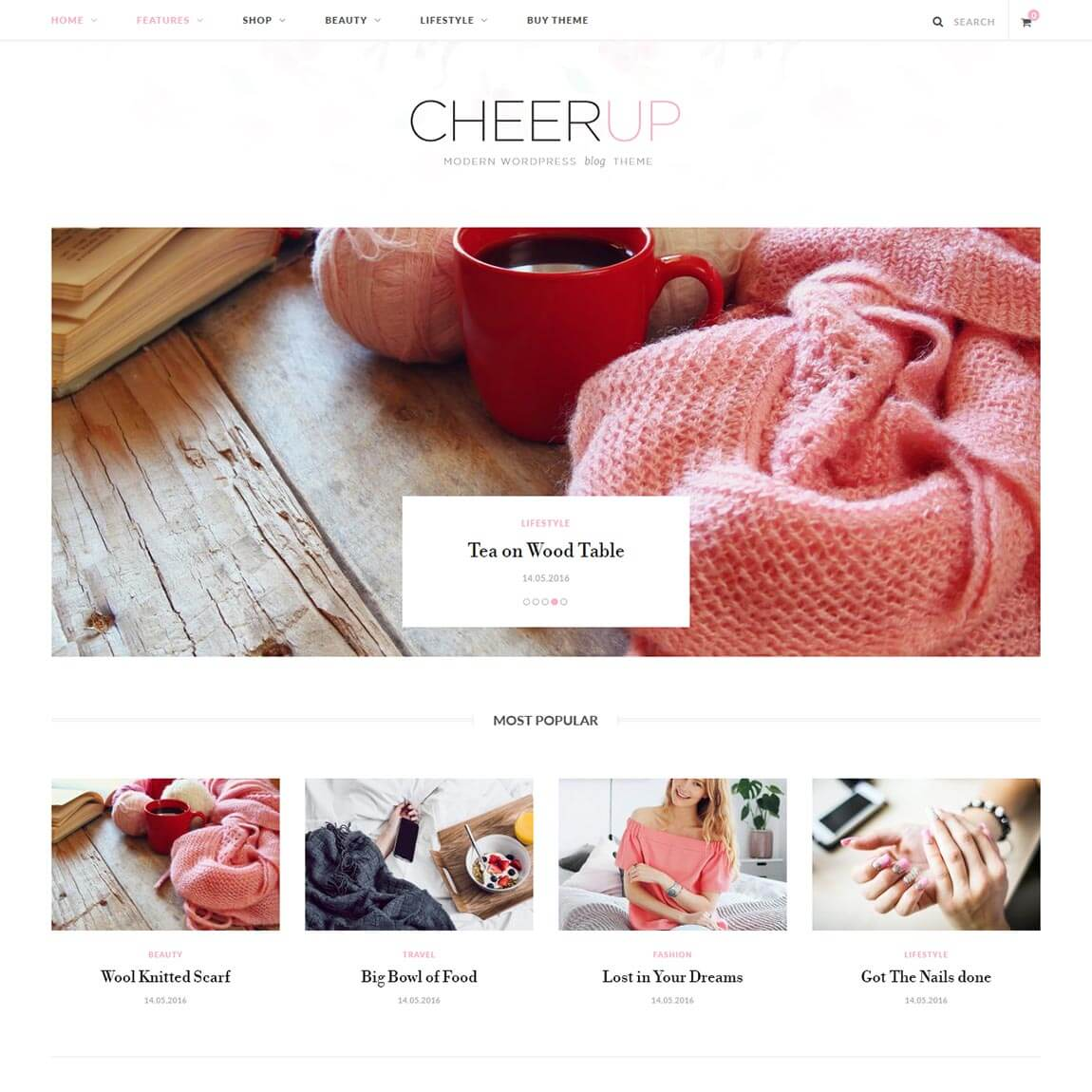 cheerup-cheap-wordpress-blog-theme