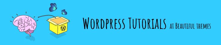 Beautiful-themes blog-banner-tg