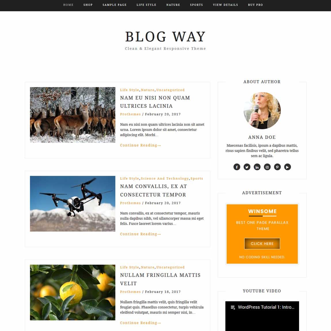 blog-way-free-minimal-wordpress-templates