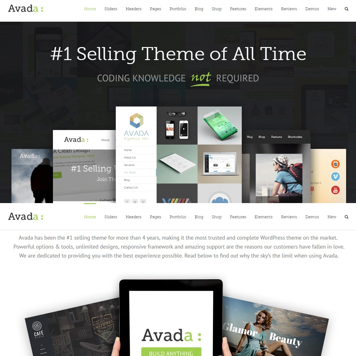 Avada-customizable-wp-theme