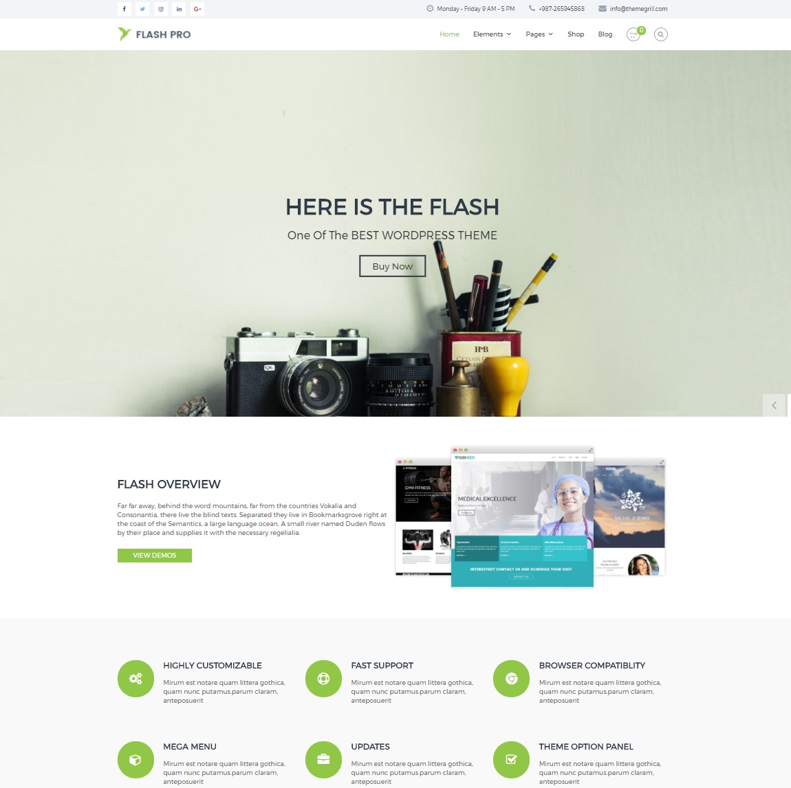flash-customizable-wp-theme