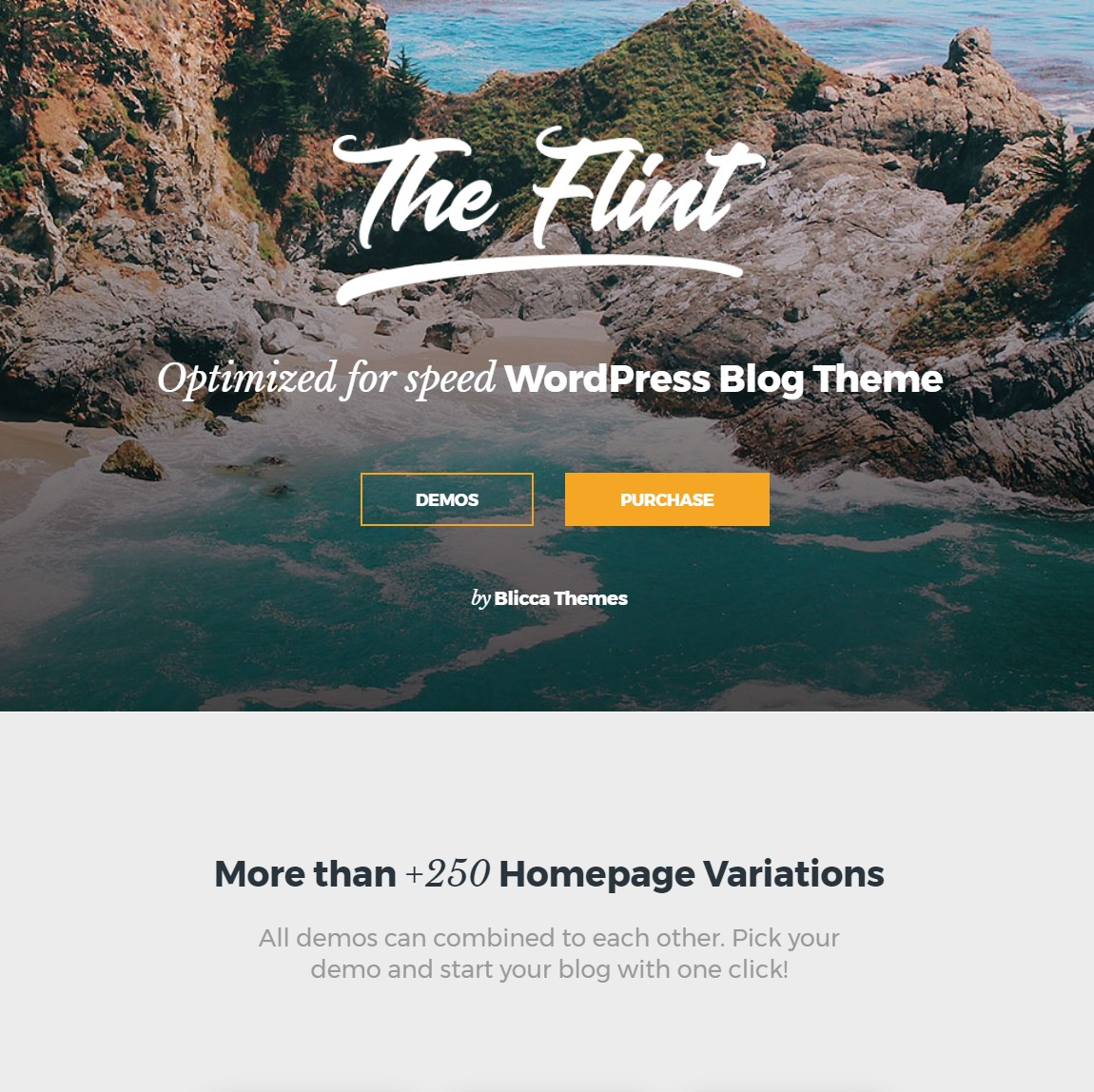 flint-customizable-wp-theme