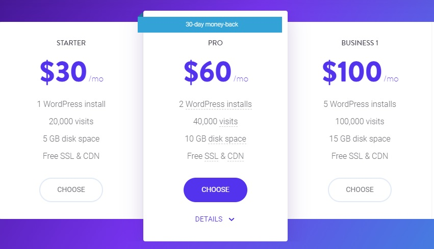price-starter-pro-business-kinsta-hosting