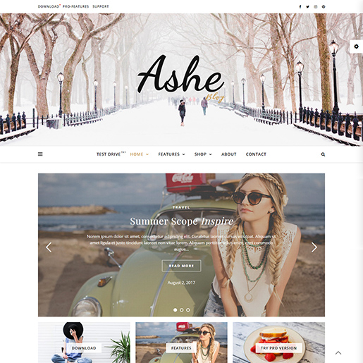 ashe-blog-wordpress-themes-for-writers