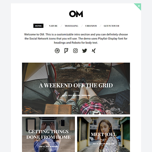 om-wordpress-themes-for-writers