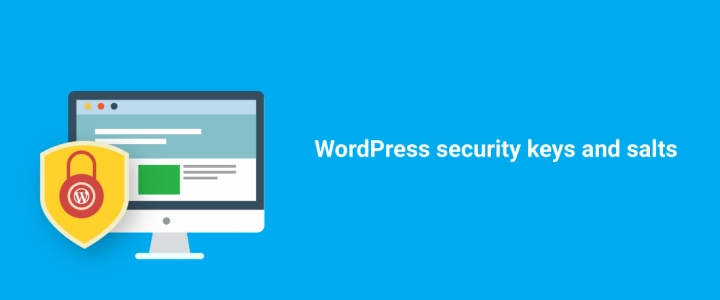Everything You Need to Know About WordPress Salts & Security Keys