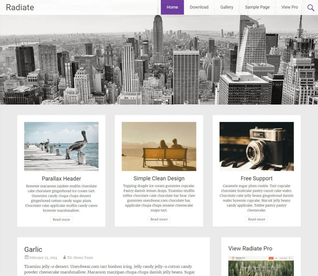 Radiate-best-free-wordpress-blog-theme