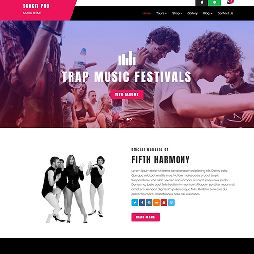 sungit-wordpress-music-theme