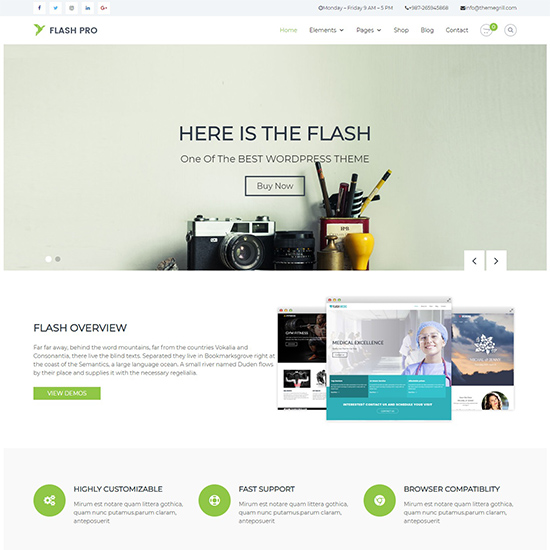 flash pro premium wordpress business theme