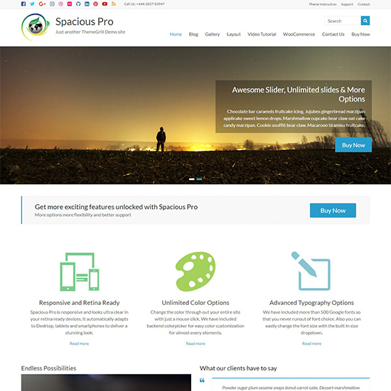 spacious pro premium wordpress business theme