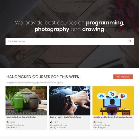 OceanWP premium wordpress business theme