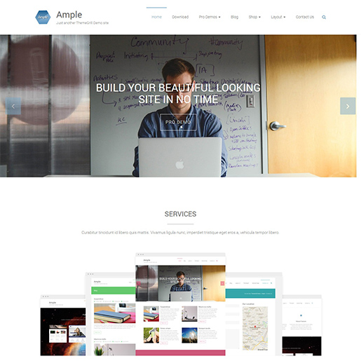 ample free event wordpress theme