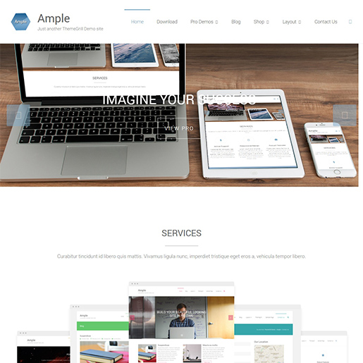 ample multipurpose wordpress themes