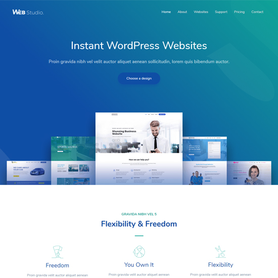 astra premium wordpress business theme