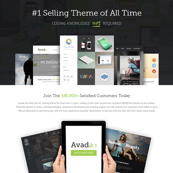 avada premium wordpress business theme