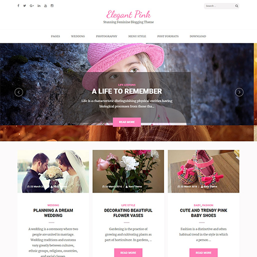 elegant pink free fashion wordpress theme