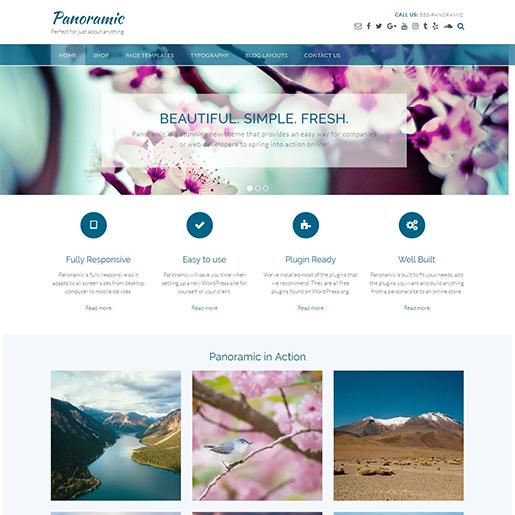 panoramic free fashion wordpress theme