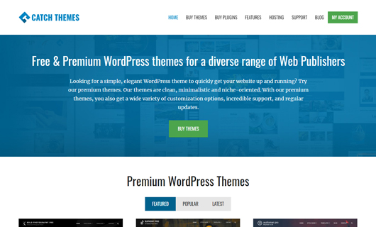 catchthemes wordpress black friday deals