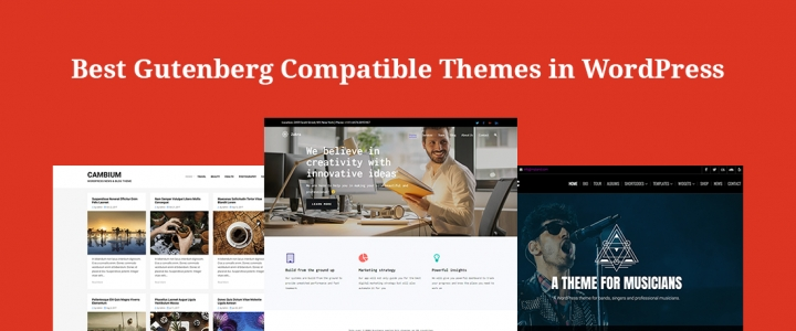 30+ Best Free Gutenberg Compatible Themes for WordPress