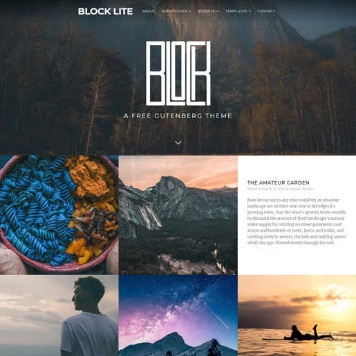 block-lite-gutenberg-compatible-wordpress-theme