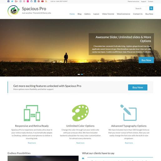 spacious-wordpress-insurance-theme