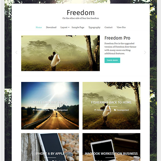 20+ Best Free WordPress Themes for Artists 2019