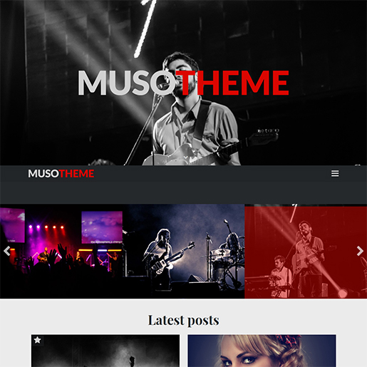 wordpress themes for artists - muso
